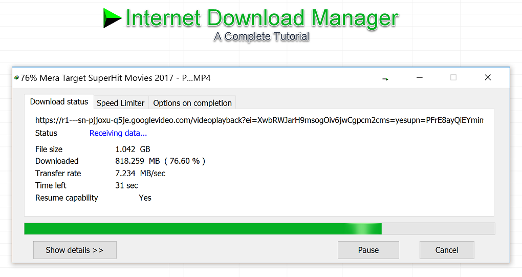 Internet Download Manager (IDM) Tutorial