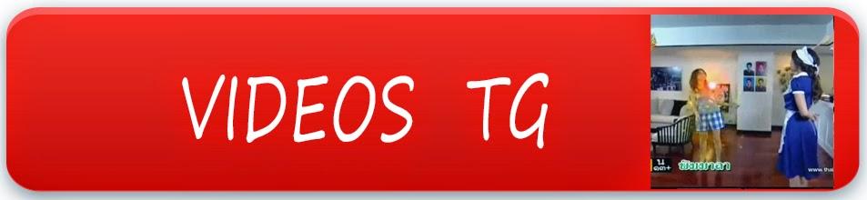http://tgespana.blogspot.com.es/search/label/Video%20tg
