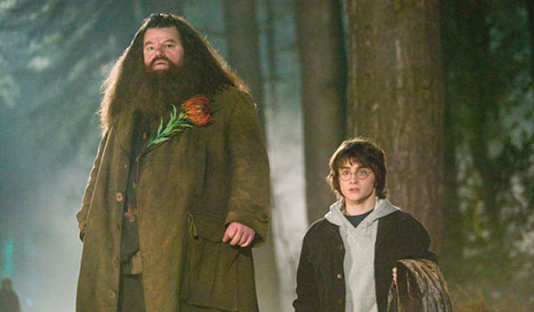 Harry potter 39 s father figures potter talk What house was hagrid in