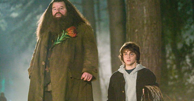 FiguresWorld > Movies & T.V. > Harry Potter |Hagrid And Dumbledore Talking