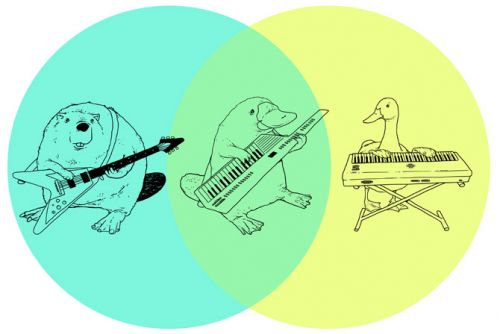 most creative venn diagram ever
