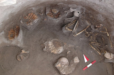 Iron Age skeletons found buried with turtles