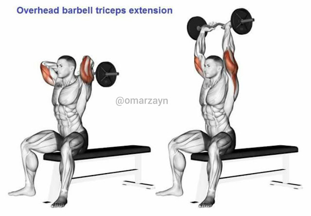 overhead barbell triceps extension triceps workout