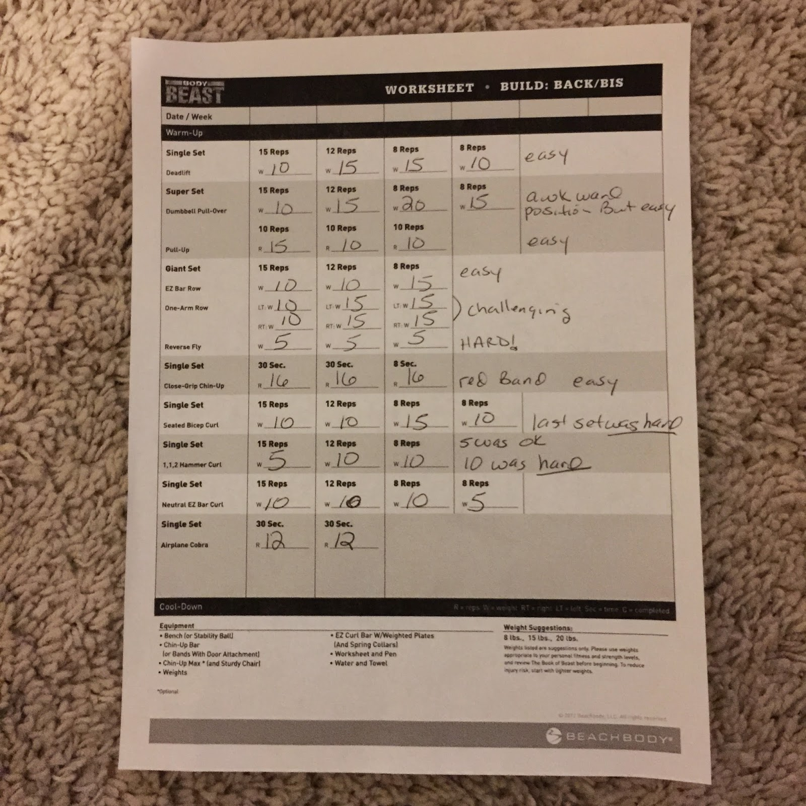 Trapped In A Fat Chick Beachbody Body Beast Day 3 Build Back And Bis
