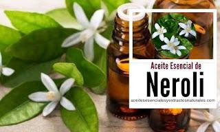 El aceite esencial de neroli es de los más buscados por sus propiedades cicatrizantes