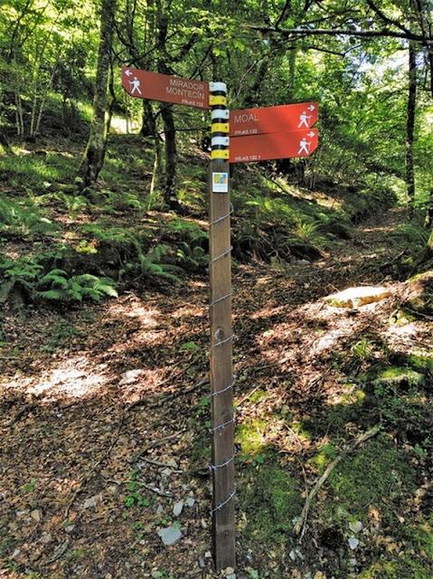 Nuevo marcador en la subida del hayedo para indicar la subida al Montecín