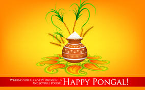 Happy Pongal DP Photos