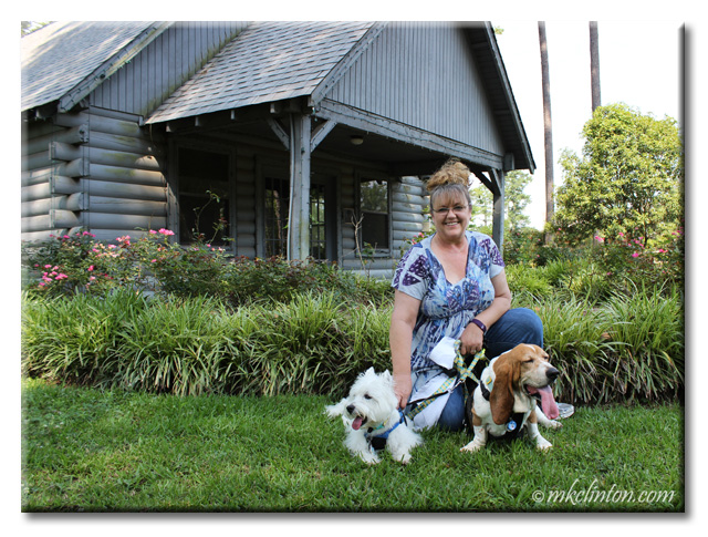 We visited the American Rose Center with Pierre Westie & Bentley Basset Hound