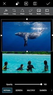 Cara Edit Foto Ada Ikan Paus Terbang di Langit / Awan