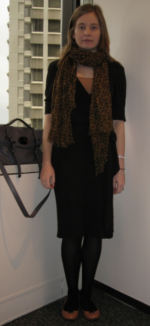 Away From The Blue Dvf Wrap Dress Leopard Print Scarf
