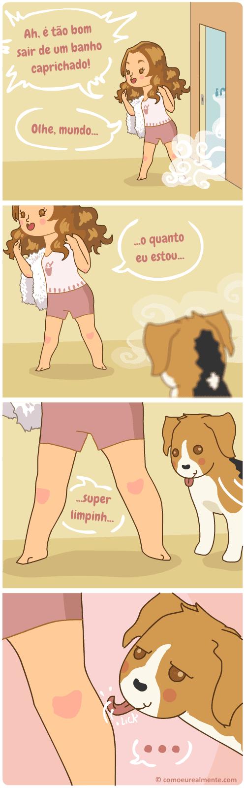 Meu cachorro ama lamber minhas panturrilhas, especialmente quando eu tô limpa, e eu não sei por quê
