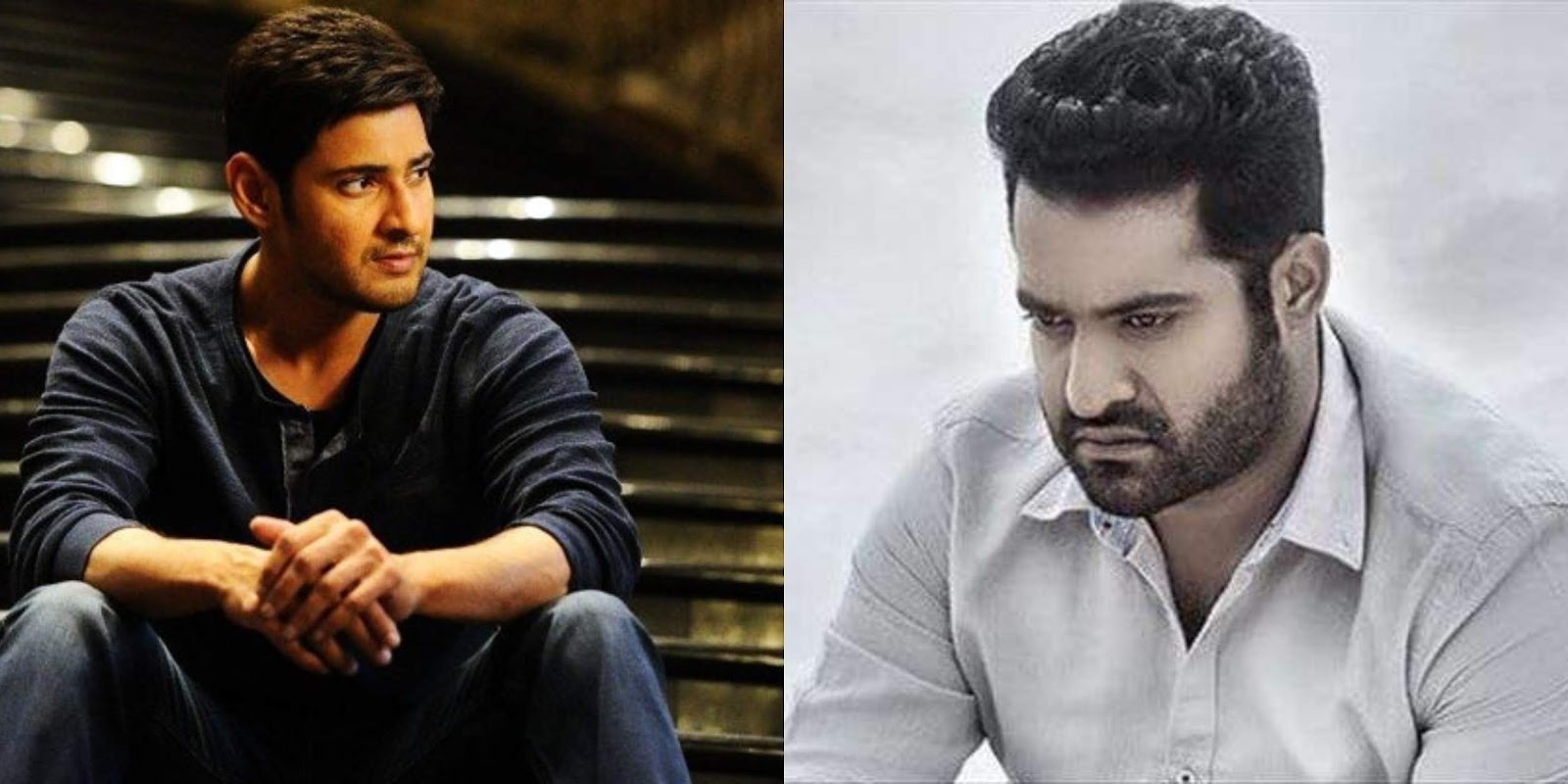Jr. NTR Fans Disappointed With Super Star Mahesh Babu!