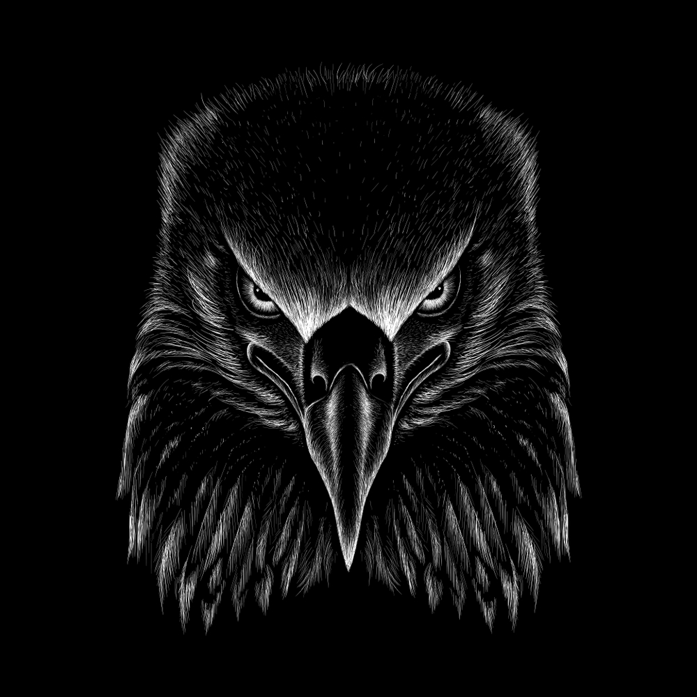 Png Sector Eagle Wallpapers Eagle Pictures Eagle Logos Free Download Eagle Hd Wallpapers Pictures Logos Images