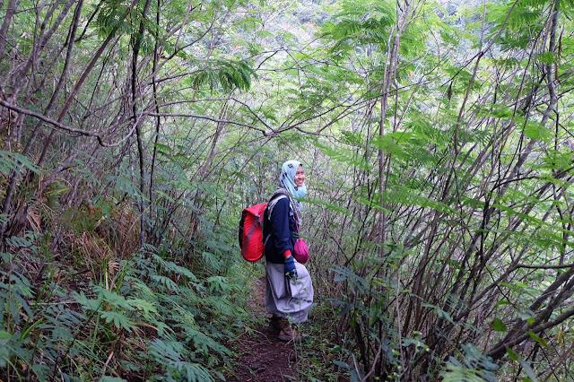 Jalur Gunung Guntur. Menuju pos 2