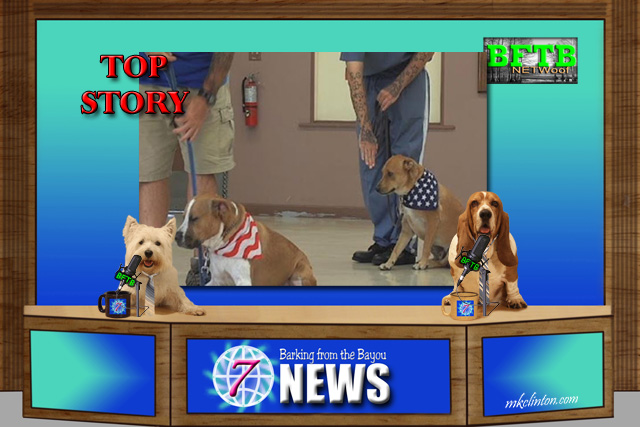 BFTB NETWoof News reports that prison inmates training shelter dogs is a win/win situation