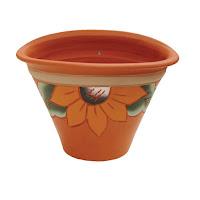 vaso pintado para plantas