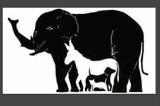 استطعت إيجاد 16 حيوان في هذه الصورة فأنت إنسان خارق ! كبر الصورة وركز جيداً