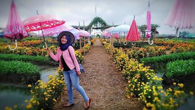 Harga Tiket Masuk Taman Ponggok Jombang