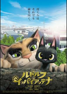 Chú Mèo Đi Lạc