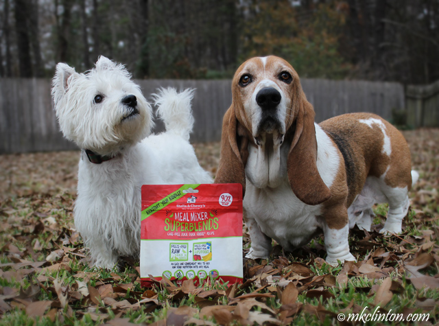 Pierre Westie and Bentley Basset Hound standing with a bag of Stella & Chewy's Meal Mixer SuperBlends