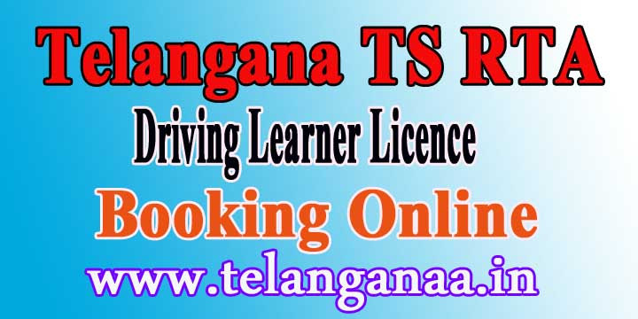 Online Slot Booking Learner Licence « List of online casinos