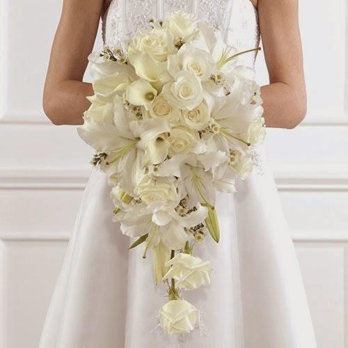 Estremamente Felici & Contenti - Organizzazione Eventi e Matrimoni: IL PRINCIPE  XA77