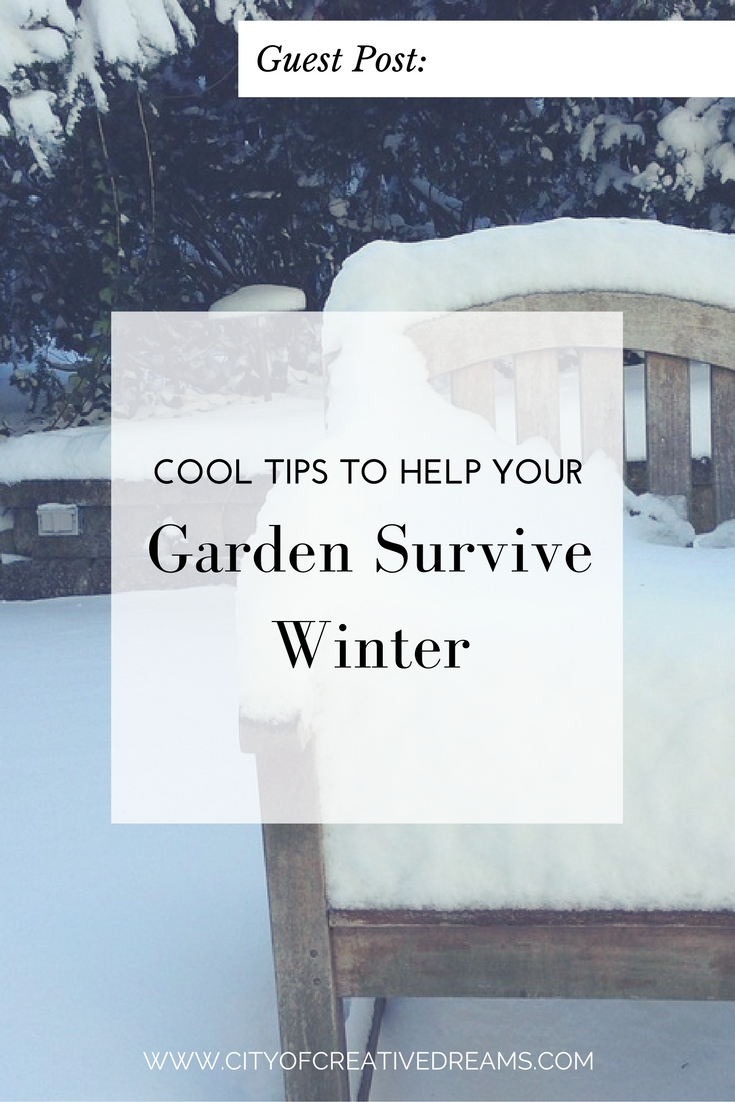 Cool Tips to Help Your Garden Survive Winter | City of Creative Dreams