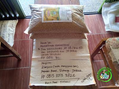 Benih pesanan MUHAMMAD ZAINUDDIN Jepara, Jateng   (Sebelum Packing)