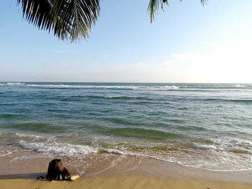 Beach, tropical beach, ocean, Indian Ocean