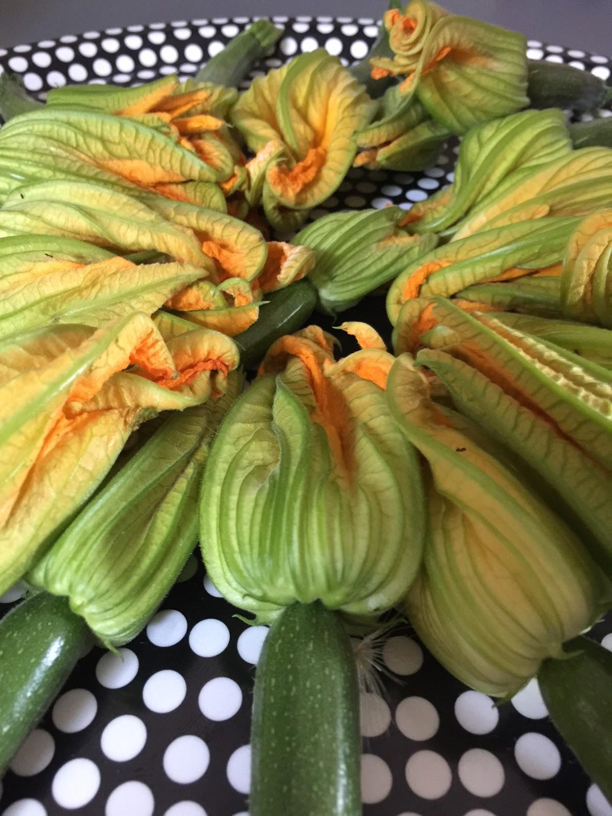saveur indigo tempuras de fleurs de courgettes au chutney de tomates vertes. Black Bedroom Furniture Sets. Home Design Ideas