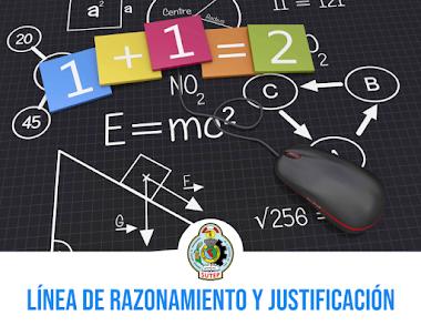 TALLER DE SOCIALIZACIÓN: LINEA DE RAZONAMIENTO Y JUSTIFICACIÓN.