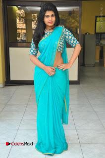 Telugu Actress Alekhya Stills in Green Saree at Swachh Hyderabad Cricket Press Meet  0100.JPG