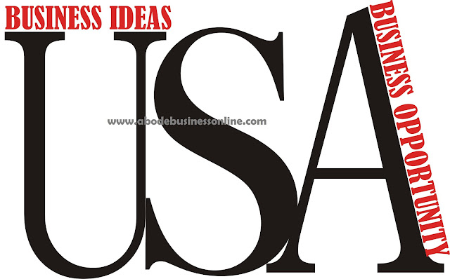 Top Business Ideas And Investment Opportunities In USA
