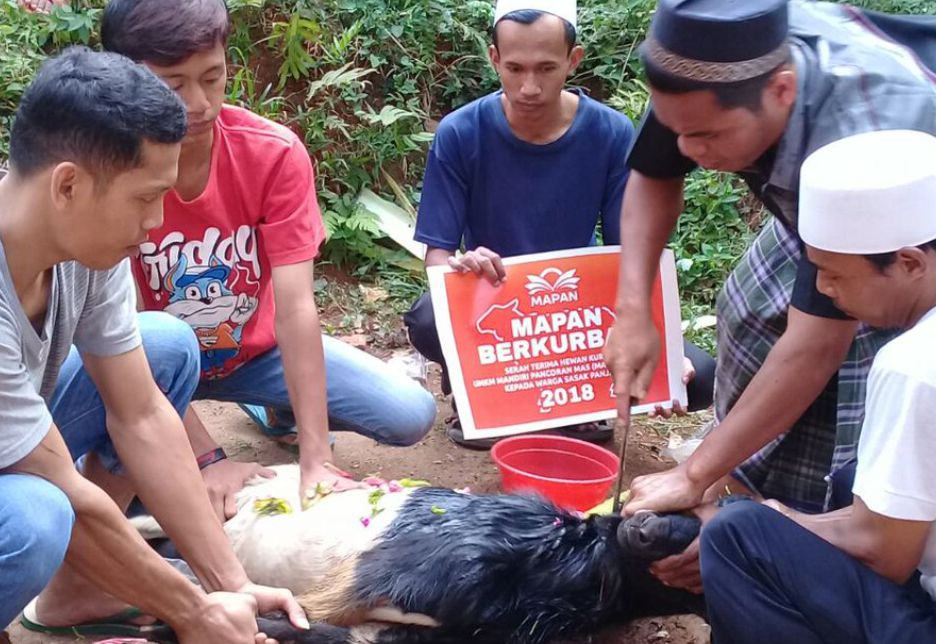 Proses penyembelihan hewan kurban UMKM Mapan oleh warga Sasak Panjang