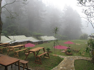 D'jungle-camp, d'jungle-private-camp, camping-puncak
