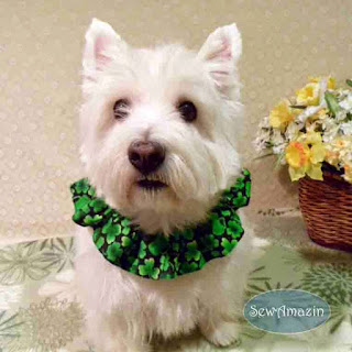 Shamrocks, Pitchers and Pints St Patricks Day Dog Scrunchie Ruffle