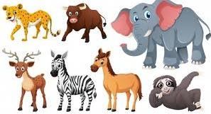 Animals Rights By Idris Tauheed