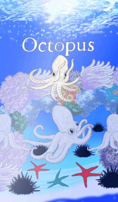 Octopus,Squid