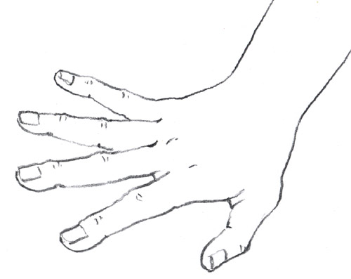 Drawing Lines Hand : An artist s life for me step by how to draw hands
