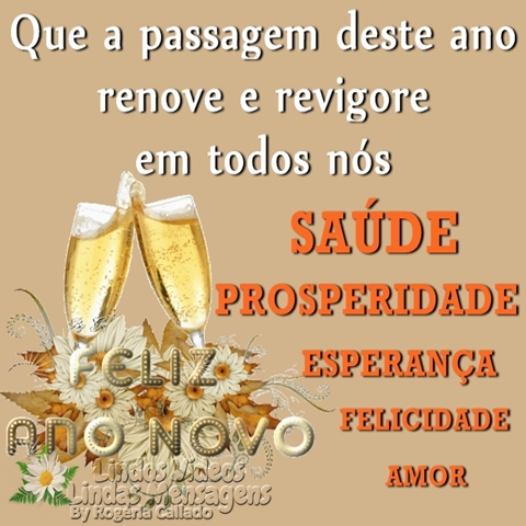 Que a passagem deste ano  renove e revigore  em todos nós  SAÚDE  PROSPERIDADE  ESPERANÇA  FELICIDADE  AMOR  Feliz Ano Novo!