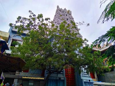 Skandagiri Lord Subrahmanya Swamy Temple Padmarao Nagar