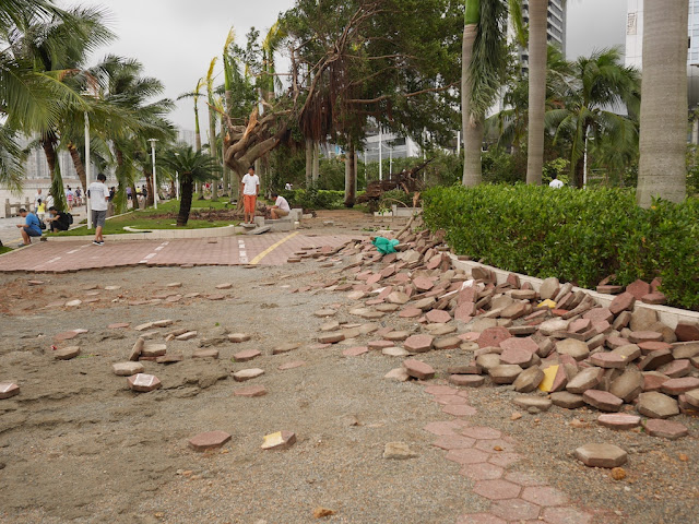 damage from Typhoon Hato at Lovers' Road in Zhuhai