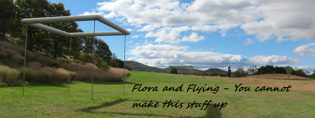 flora and flying - You cannot make this stuff up