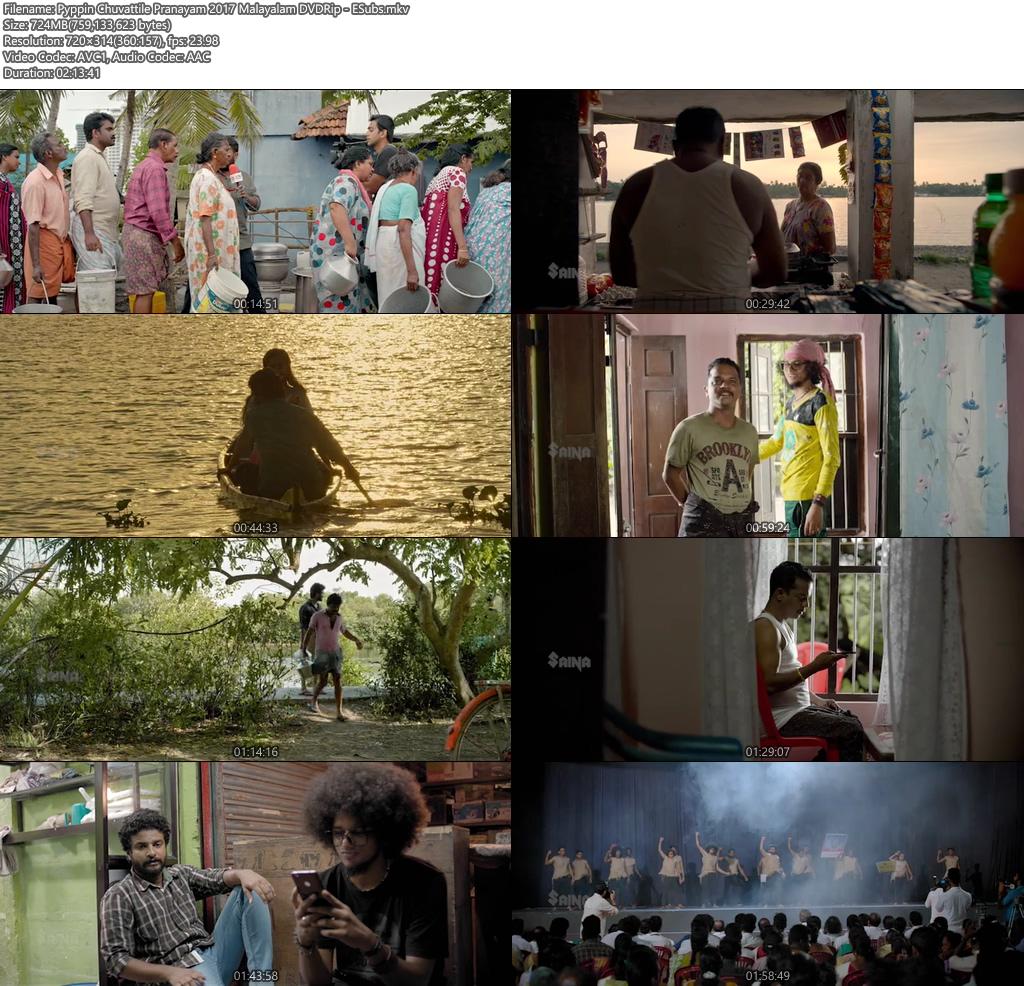 Pyppin Chuvattile Pranayam 2017 Malayalam DVDRip ESubs | 480p | HEVC Screenshot