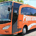 Bus Pariwisata Panorama Tours