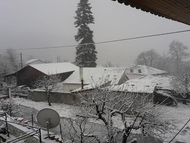 Image result for χιονια pellain