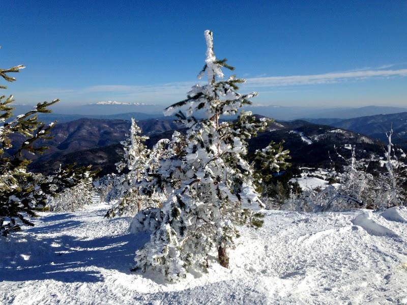 Ски писта, фън парк и страхотни гори в Осоговската планина