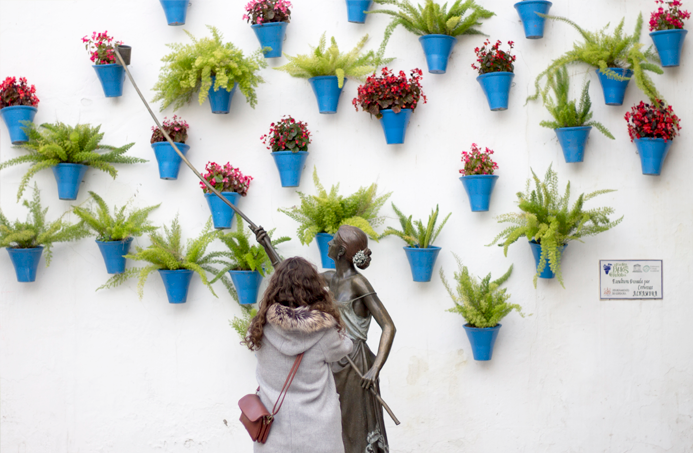 córdoba fotografía spain homenaje patios