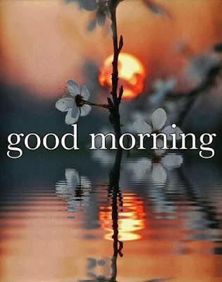 good morning image for whatsapp - beautiful scenery