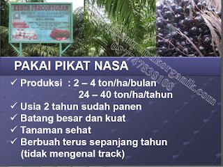 distributor pupuk sawit nasa singkan